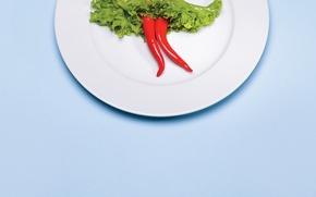 Картинка креатив, тарелка, перец, салат, картофель