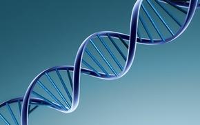 Обои минимализм, ДНК, Спираль