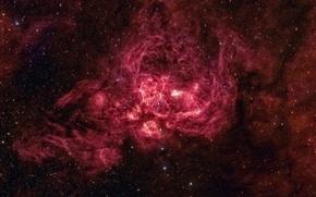 Картинка Звезды, Космос, NGC 6357, Эмиссионная, Туманность в Скорпионе