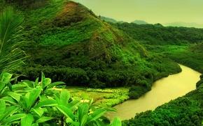 Обои гора, зелень, река