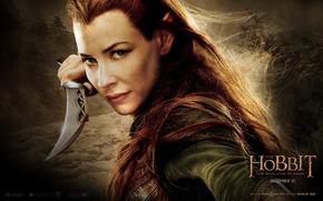 Обои elf, Mirkwood, Evangeline Lilly, Лихолесье, Хоббит: Пустошь Смауга, The Hobbit: The Desolation of Smaug, Тауриэль, ...