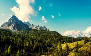 Картинка лес, небо, облака, деревья, горы, вид