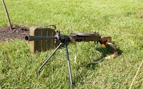 Картинка трава, оружие, пулемёт, ручной, пехотный, ДП-27, Дегтярёва