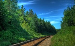 Обои поезда, природа, деревья, железные дороги, шпалы, железная дорога, пути, фото, рельсы, леса, транспорт