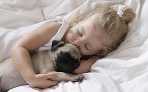 Обои дети, детство, животное, ребенок, собака, спит, dog, child, childhood, children, little girl, pet, маленькая девочка, ...