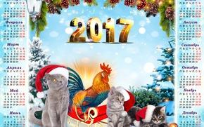 Обои позолота, детский, птица, 2017, новый год, месяца, хвоя, коллаж, колпак, год, снег, шишки, новый 2017, ...