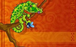 Картинка хамелеон, муха, Вектор