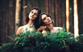Картинка лес, две девушки, подруги