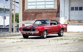 Обои Chevrolet, 1969, Camaro, шевроле, камаро
