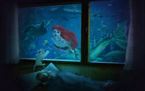 Обои ребёнок, окно, русалка, книга, рыбы, Комната, сон, черепаха, кот