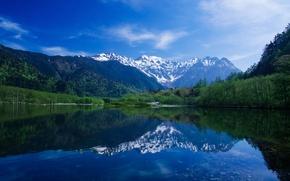 Обои лес, небо, горы, озеро, берег