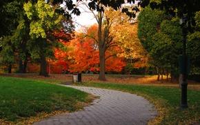 Картинка Осень, Парк, Fall, Дорожка, Park, Autumn, Colors, Trees