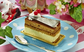 Картинка ягоды, шоколад, торт, десерт, декор, бисквит
