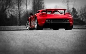 Картинка Porsche, red, Carrera, rear