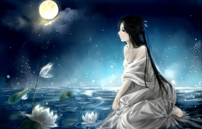Фото обои небо, девушка, облака, ночь, озеро, луна, аниме, арт, кувшинки, clouble