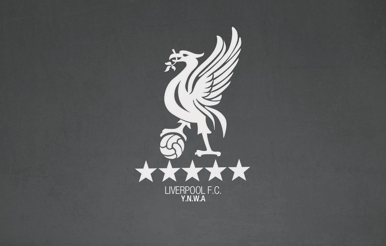 Oboi Liverpul Liverpool Fc Ynwa Enfild Kartinki Na Rabochij Stol Razdel Sport Skachat
