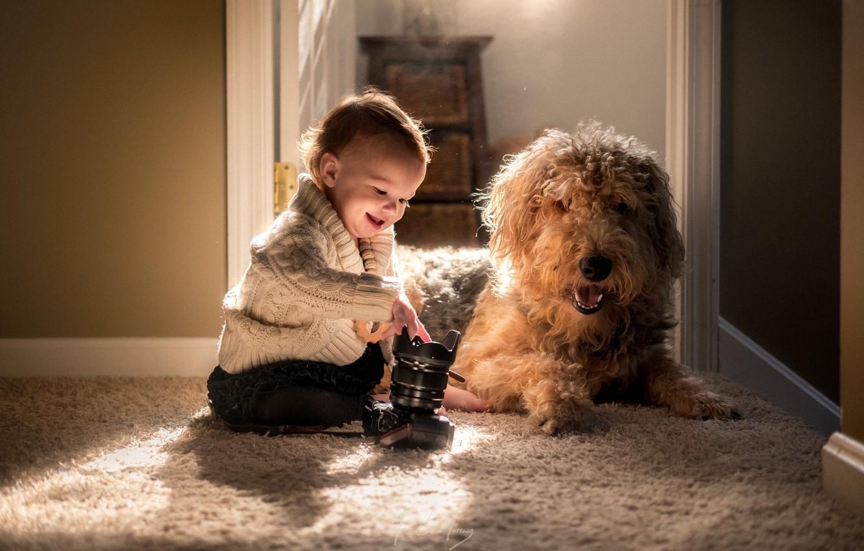 Фотосессия животных на дому прежде