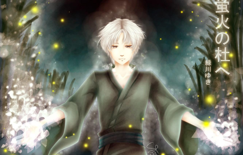 Фото обои светлячки, призрак, парень, anime, art, в лес где мерцают светлячки, Гин