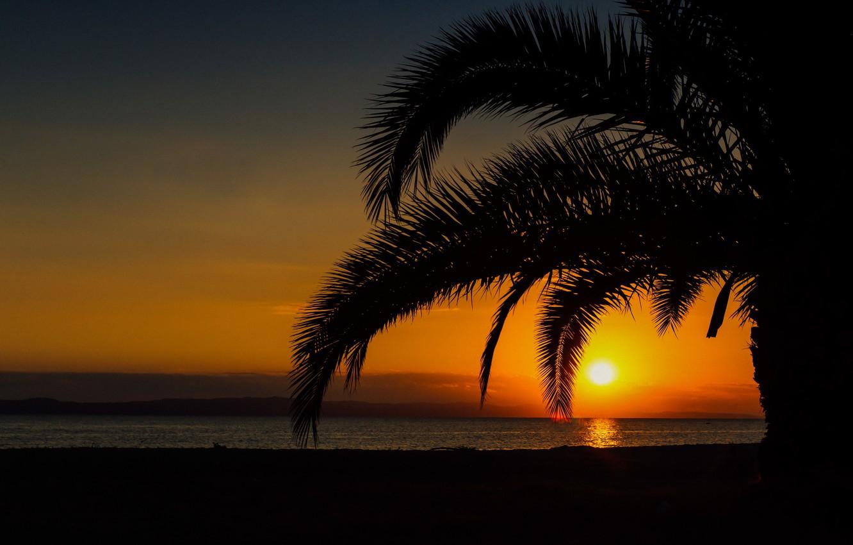 Фото обои море, лето, закат, пальмы, красота