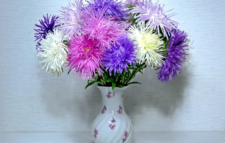 при картинки букет астр цветы хоть