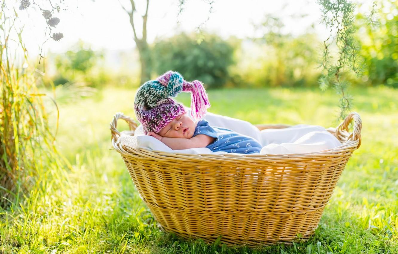 Фото обои корзина, сон, шапочка, младенец, спящий