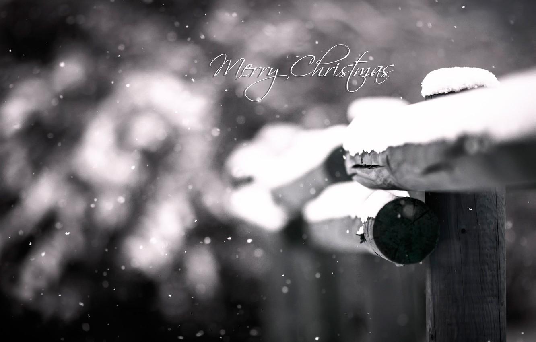 Фото обои макро, снег, боке, Merry Christmas