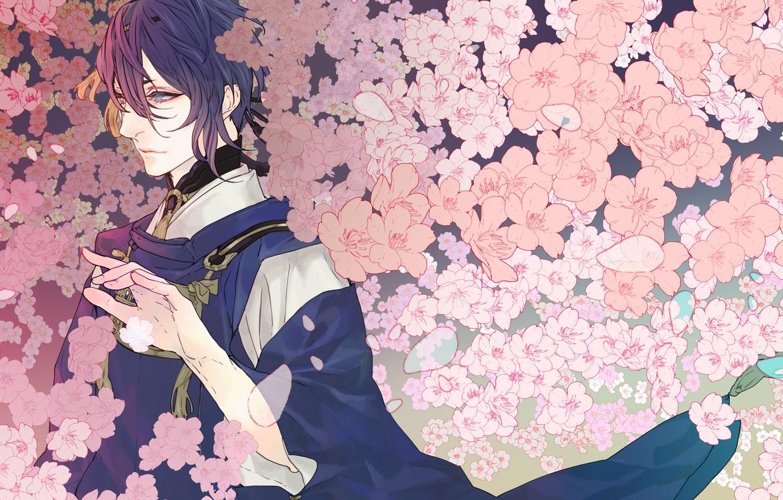 Фото обои цветы, арт, парень, touken ranbu