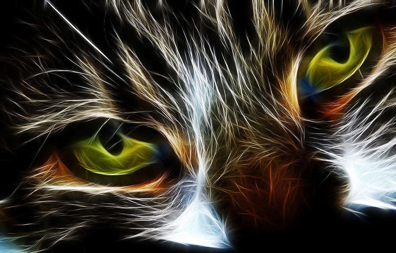 Фото обои кошка, глаза, кот, абстракция