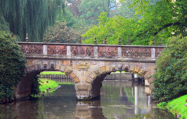 Фото обои деревья, мост, природа, парк, река, утка