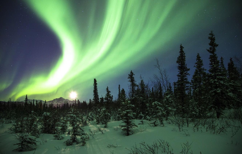 картинки северного сияния зимой это целый