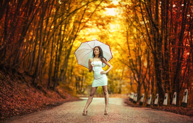 Фото обои девушка, зонт, платье, боке, Дорога в осень