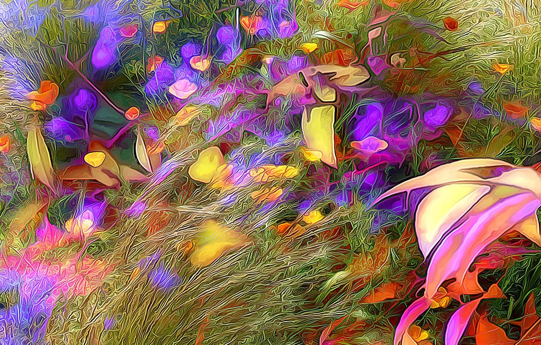 Обои луг, цветы. Абстракции foto 6