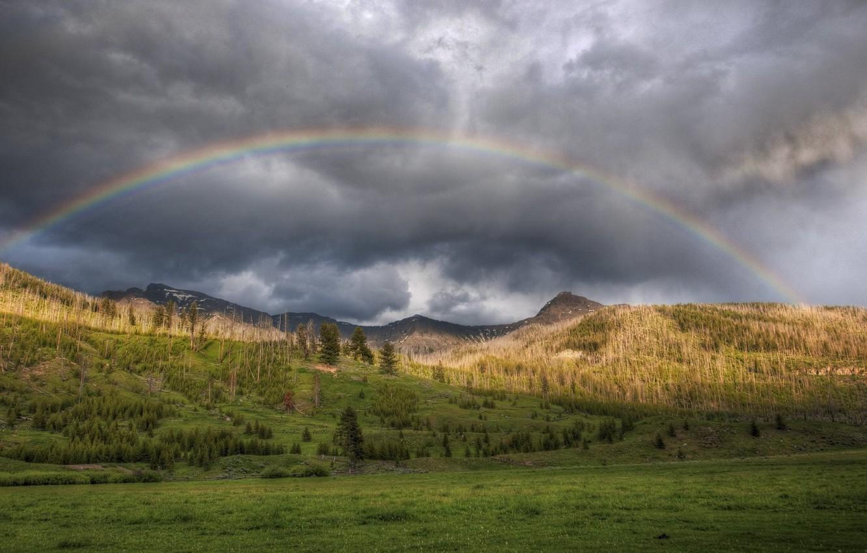 Фото обои лес, лето, небо, горы, природа, фото, радуга
