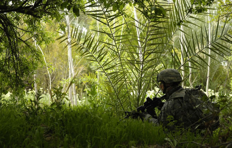 Фото обои лес, трава, автомат, Солдат, экипировка