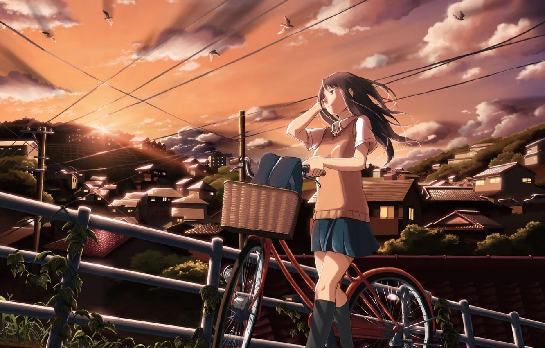 Фото обои небо, девушка, облака, закат, птицы, велосипед, город, дома, аниме, арт, школьница, inoki