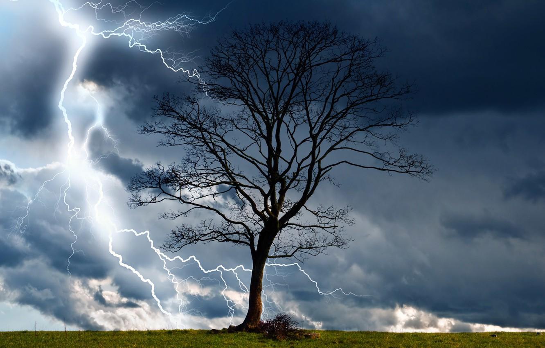 Фото обои гроза, тучи, природа, дерево, молния