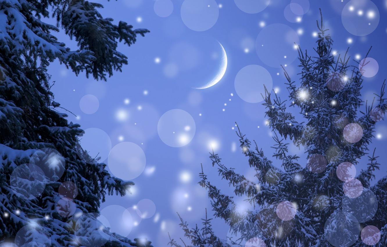 Фото обои снежинки, месяц, ёлки