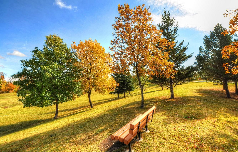 Фото обои осень, небо, трава, деревья, парк, скамья
