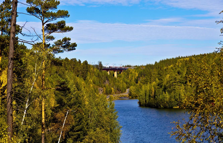 Фото обои дорога, лес, мост, река, поезд, железная дорога, Россия, Иркутск