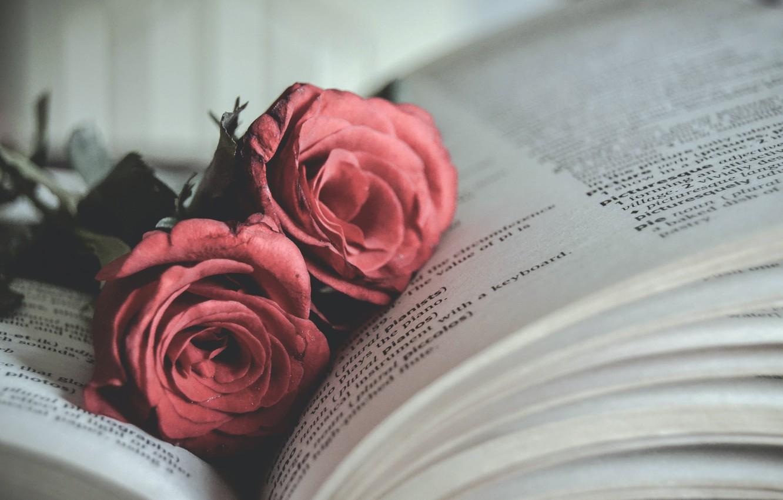 Картинки с черными розами и книгой, коляской