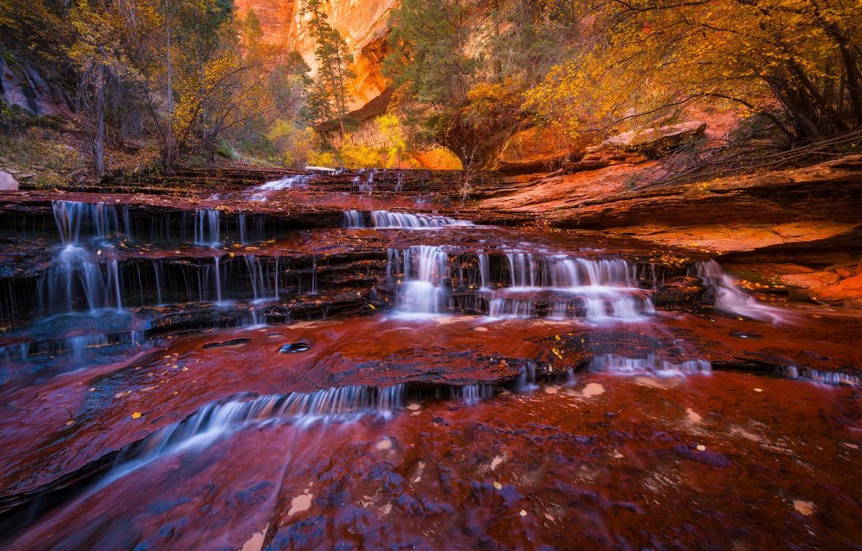 Обои Zion national park, сша, ручей, водопад, юта, скалы. Природа foto 11