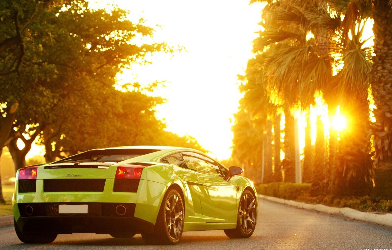 Фото обои Солнце, Машина, Пальмы, Gallardo, Green, Lamborgini, Sun, Ламборгини, Галлардо, Sportcar