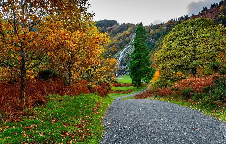 Фото обои дорога, осень, лес, небо, листья, вода, облака, деревья, горы, природа, парк, colors, colorful, forest, road, …
