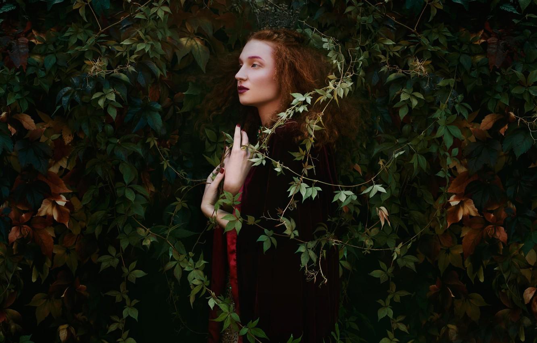 Фото обои листья, девушка, макияж, профиль, Bella Kotak