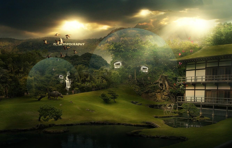 Фото обои животные, круги, мост, природа, уют, озеро, дом