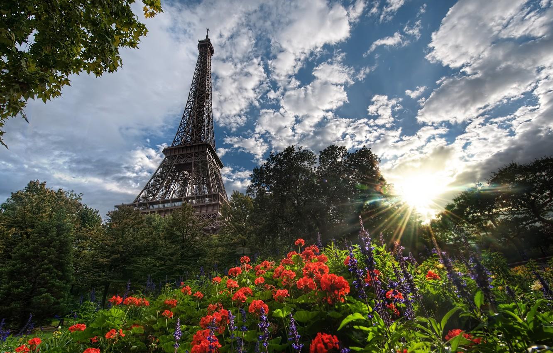 Фото обои лето, цветы, эйфелева башня, париж, summer, франция, paris, france, flowers, eiffel tower
