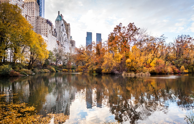 Осень в городе картинка на рабочий стол