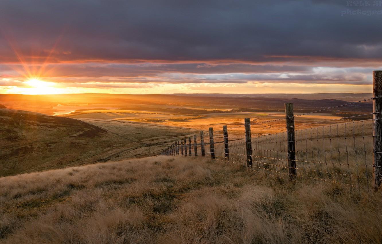 Фото обои поле, закат, забор