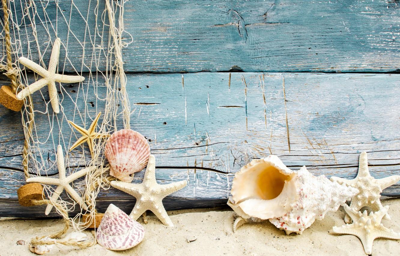 Фото обои песок, пляж, ракушки, beach, wood, sand, marine, seashells, starfishes