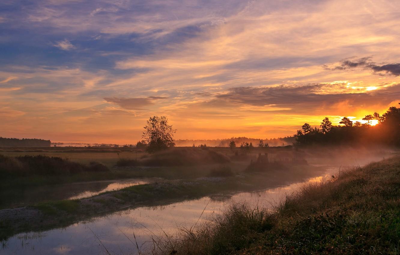 Фото обои небо, трава, солнце, облака, деревья, закат, поляна, Поле, вечер, долина, канал